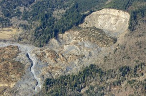 The cliff that collapsed into a massive mudslide is seen covered with felled trees in Oso, Washington March 31, 2014. Recovery teams struggling through thick mud up to their armpits and heavy downpours at the site of the devastating landslide in Washington state are facing yet another challenge - an unseen and potentially dangerous stew of toxic contaminants. REUTERS/Rick Wilking (UNITED STATES - Tags: DISASTER ENVIRONMENT) - RTR3JE4A