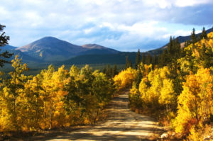 Boreas Pass Road in Fall